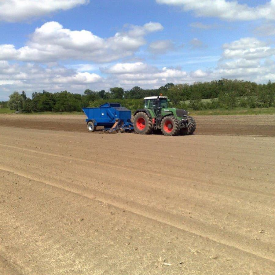 Using a specialist planter developed by one of our grower members - WH Loxton of Somerset